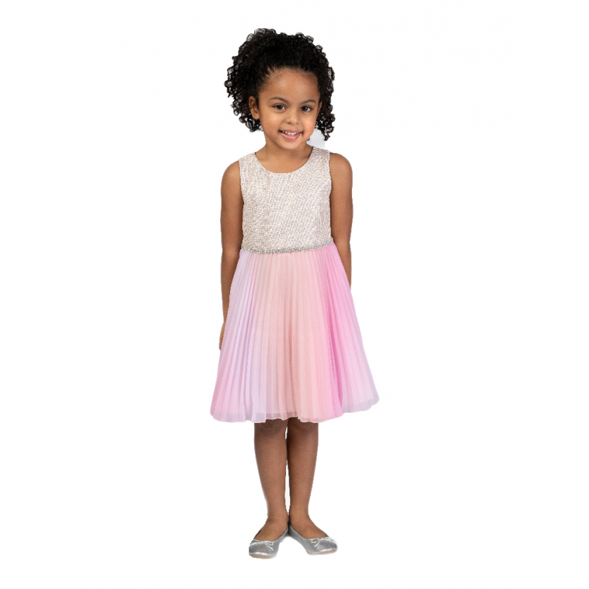 Bonnie Jean Little Girls Pink Sparkly Trim Ombre Pleated Dress 4-6X